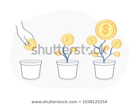 Pénzfa edény ikon vektor skicc illusztráció Stock fotó © pikepicture