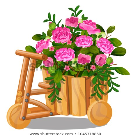 Flower pot in the shape of wooden cart with bucket with pink flowers isolated on white background. V Stock photo © Lady-Luck