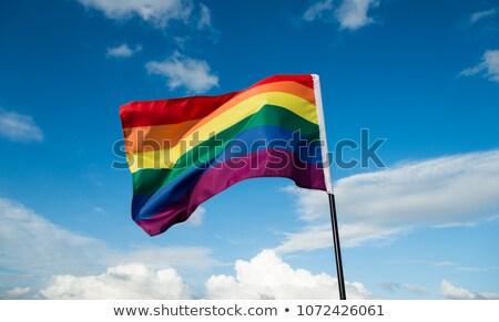 transgender pride, bisexual pride and rainbow flag Stock photo © nito