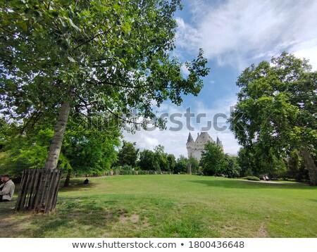 Zamek ogród lądowanie Nowy Jork miesięcznie Zdjęcia stock © Stocksnapper