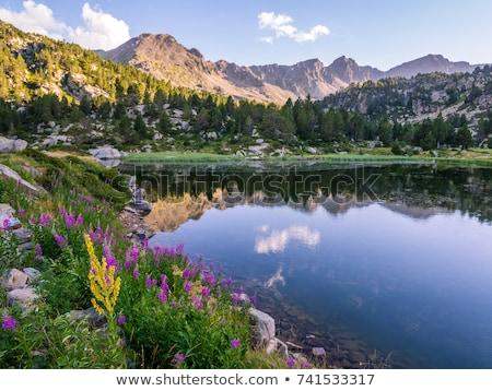 Foto stock: Paisagem · montanhas · belo · montanha · férias · caminhadas
