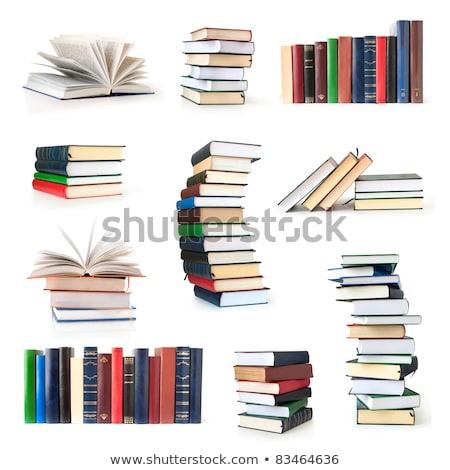 Boek hoop geïsoleerd witte business wetenschap Stockfoto © Raduntsev