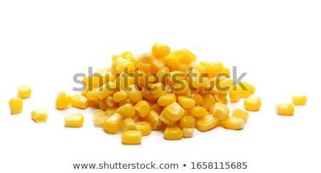 Corn kernels Stock photo © stevanovicigor