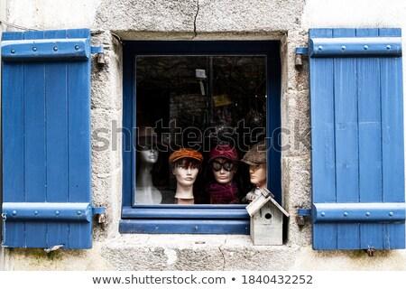 cobblestone 04 Stock photo © LianeM