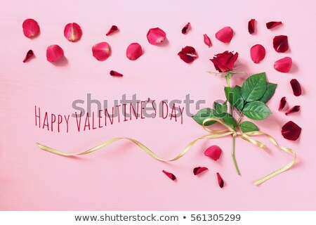 One red flower with message-card Stock photo © boroda