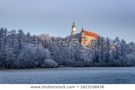Nove Mesto nad Metuji at Christmas, Czech Republic Stock photo © phbcz