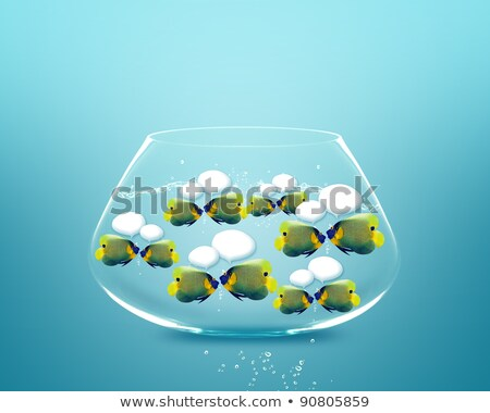 angelfish with speech bubbles.  Stock photo © designsstock