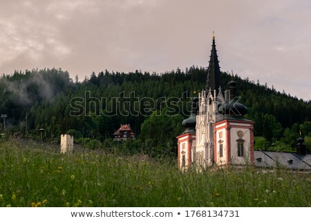 Pilgrimage Church in Mariazell Stock photo © tepic