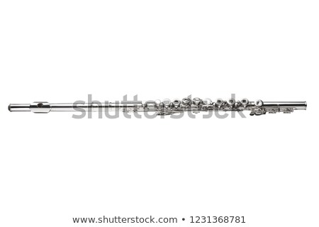 flute isolated stock photo © timbrk