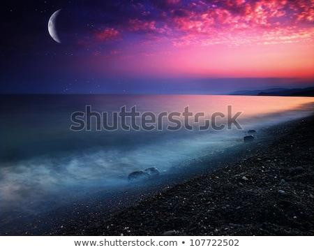 無限 · 抽象的な · 環境の · 背景 · ツリー · 日没 - ストックフォト © tolokonov