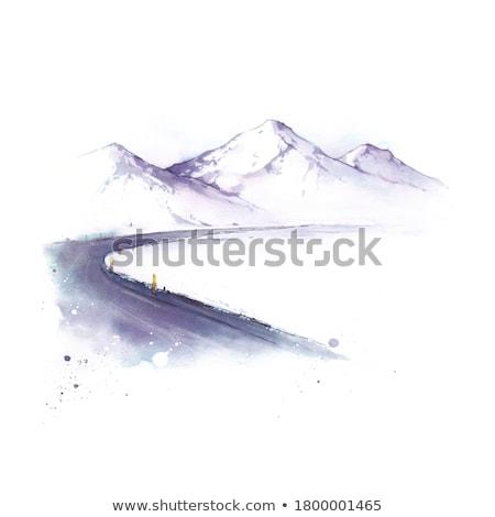 道路 ツリー 森林 雪 を実行して 雲 ストックフォト © Discovod