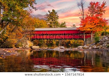 Covered Bridge Stock photo © vlad_podkhlebnik