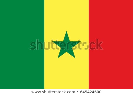 Vlag Senegal wind Stockfoto © creisinger