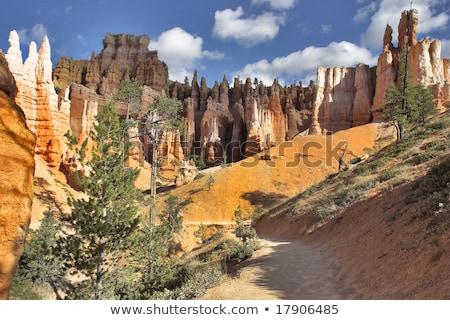 egyedi · színes · kő · kanyon · park · Utah - stock fotó © meinzahn