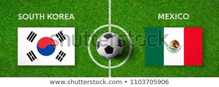 ストックフォト: サッカーボール · 韓国 · フラグ · ピッチ · サッカー · 共和国