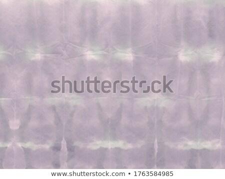 цветочный украшение фрактальный аннотация природы дизайна Сток-фото © andromeda