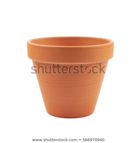 Lege bloempot metaal witte groene plant Stockfoto © dezign56