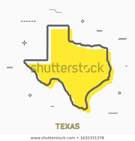 テキサス州 行 にログイン フラグ ストックフォト © AndreyKr