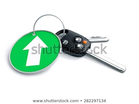 szett · slusszkulcs · izolált · fehér · nyíl · zöld - stock fotó © crashtackle