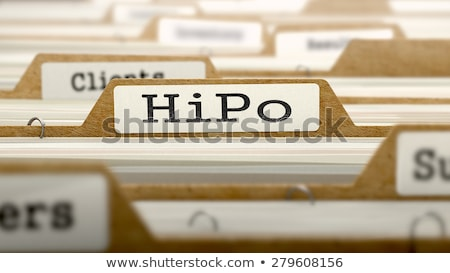 high potential on business folder in catalog stock photo © tashatuvango