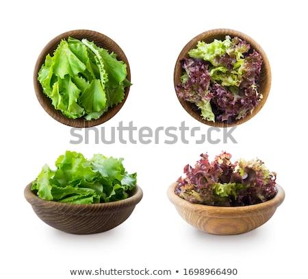 Zielone świeże sałata najlepszy Zdjęcia stock © mcherevan