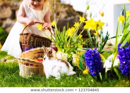 girl on easter egg hunt with living easter bunny stock photo © kzenon