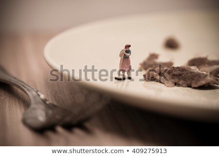 Miniature Housemaid Washing Dishes. Macro photo Stock photo © Kirill_M