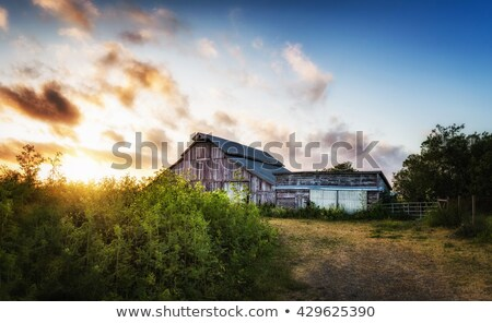 old barn at sunset panoramic color image stock photo © backyard-photography