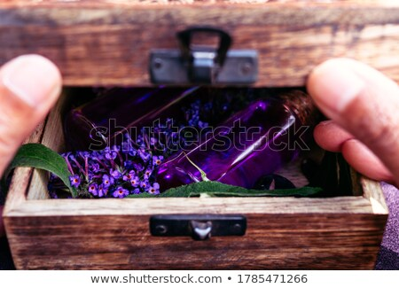 Stock photo: High contrast purple boxes