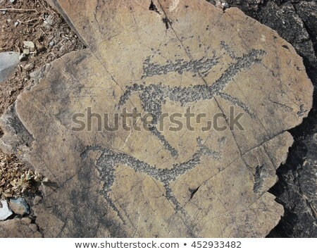running animals petroglyphs carved in rocks stock photo © tasipas