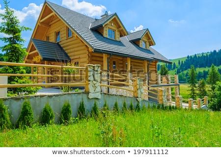 春 風景 木製 家 山 最後 ストックフォト © Kotenko