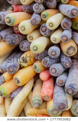 aile · dört · alışveriş · çocuk · erkek · pazar - stok fotoğraf © is2