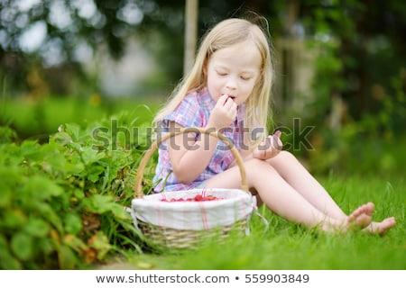 Stock fotó: Kisgyerek · eszik · vad · eprek · gyermek · kosár