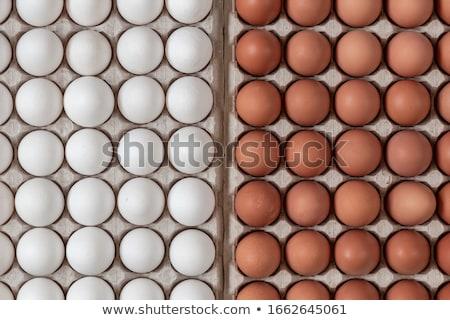 Barna fehér tyúk tojások friss kosár Stock fotó © Lana_M