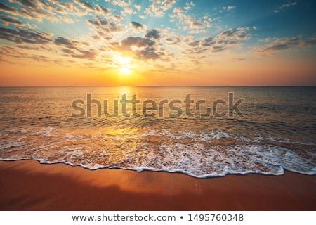 Zomer zeegezicht zonsopgang caribbean zee tropische Stockfoto © ixstudio