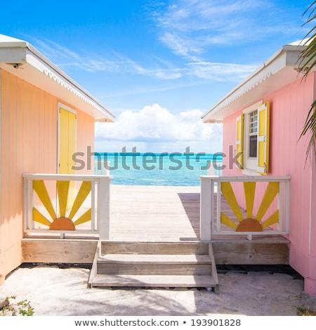 Pequeño playa frente cabaña ilustración árbol Foto stock © bluering