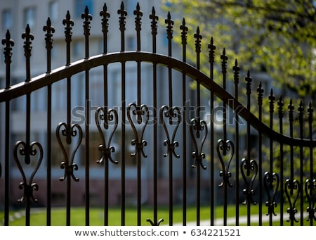 Wrought iron fence spike Stock photo © boggy