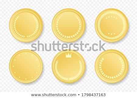 Set militärischen Emblem Label Form Design Stock foto © popaukropa