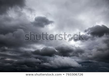 Cyclone in the rainy storm Stock photo © bluering