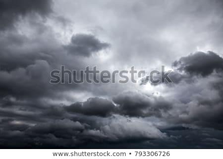 дождливый · сезон · иллюстрация · Японский · материальных · облака - Сток-фото © bluering
