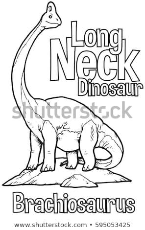 állat skicc dinoszaurusz hosszú nyak illusztráció Stock fotó © colematt