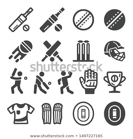 крикет · Кубок · икона · серый · зеленый · области - Сток-фото © angelp