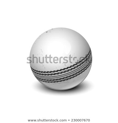 White Cricket Ball Stock photo © albund