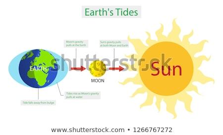 Húzás diagram illusztráció földgömb háttér Föld Stock fotó © bluering