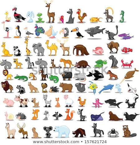 Ezel dier cute illustratie gelukkig Stockfoto © Krisdog