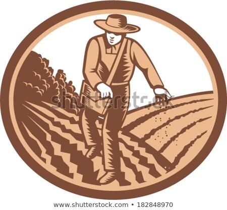 Landbouwer zaden veld groene vrouw Stockfoto © robuart