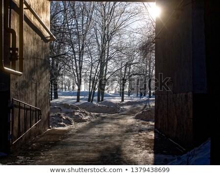 льда · стены · синий · аннотация · фон · кирпичных - Сток-фото © lady-luck