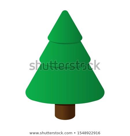 Cone Christmas Tree Isometric Object Stock photo © Anna_leni