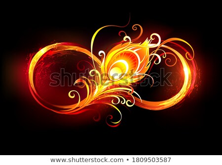 Fiery infinity symbol with peacock feather Stock photo © blackmoon979