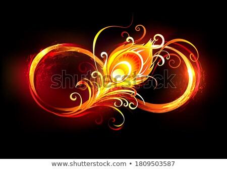 Vurig oneindigheidssymbool pauw veer symbool Stockfoto © blackmoon979